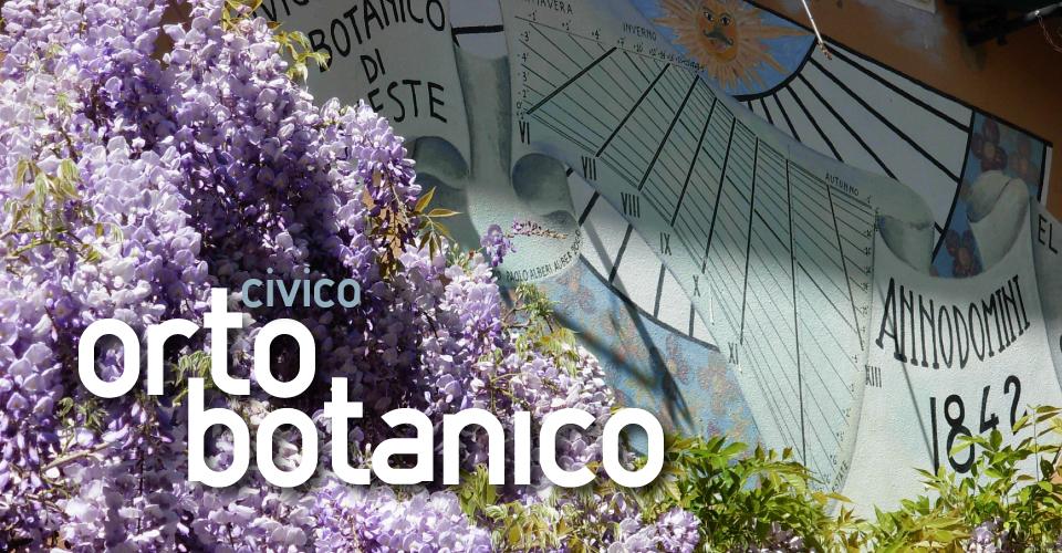 botanik wissenschaft news